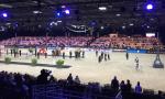 Paris pure arabian horse championchip_1