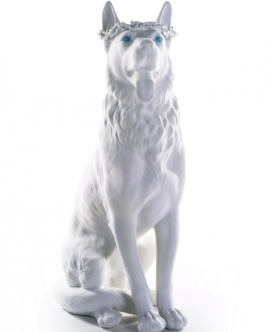 Dog-Ralph-Hal