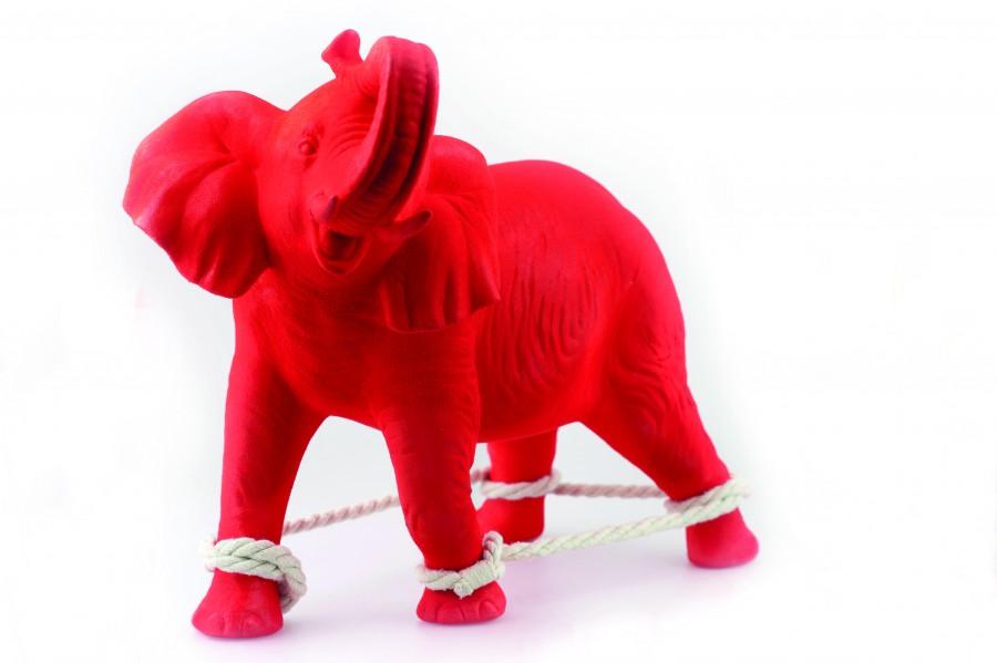 Elephant-Ralph-Hall