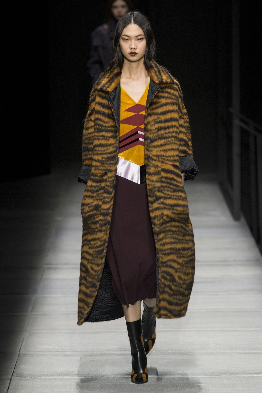 animalier coat