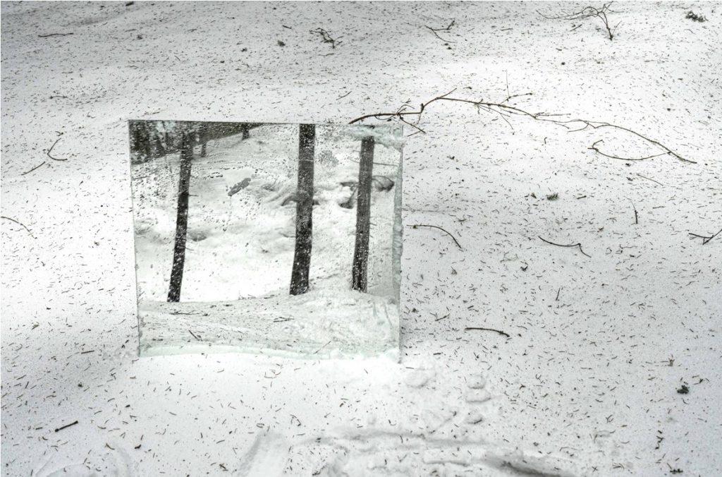 Andrea Tirindelli, Oltre il visibile della natura, stampa fotografica, 65x75 cm
