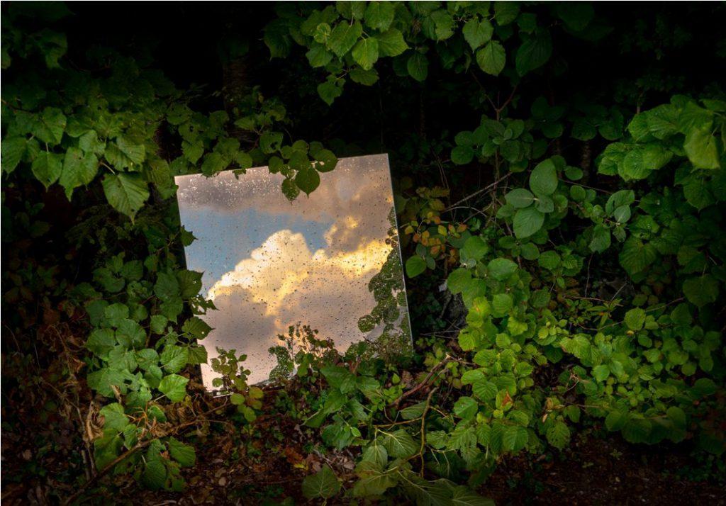 Andrea Tirindelli, Oltre il visibile della natura, stampa fotografica, 72x102 cm